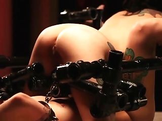 Restrained All Girl Fucktoys Sub